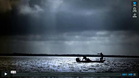 Tarpon Fly Fishing