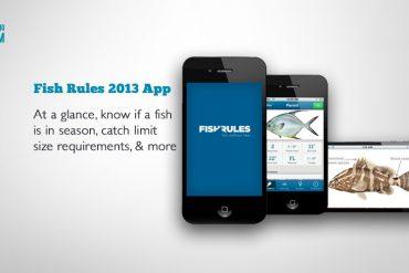Fish Rules App